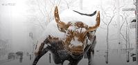 """证券股票量化交易分析买最好的股票:克莱默的""""疯钱""""回顾(星期二2/2/21)"""
