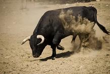 战略家们提高了2021年的股票市场前景