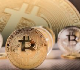 随着比特币的主导地位稳步下降,机构在看什么加密资产?