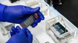 生物技术的未来一周(9 月 12-18 日):Calliditas FDA 决定、辉瑞/BioNTech COVID-19 疫苗的 Adcom 审查、肿瘤学会议和 IPO